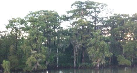 131227 Louisiana 2013 Sticky