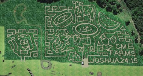 141127 Lost and Cornfused Maze